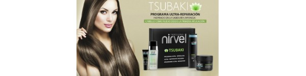 Tsubaki - Ultra Repair Series for dry and damaged hair