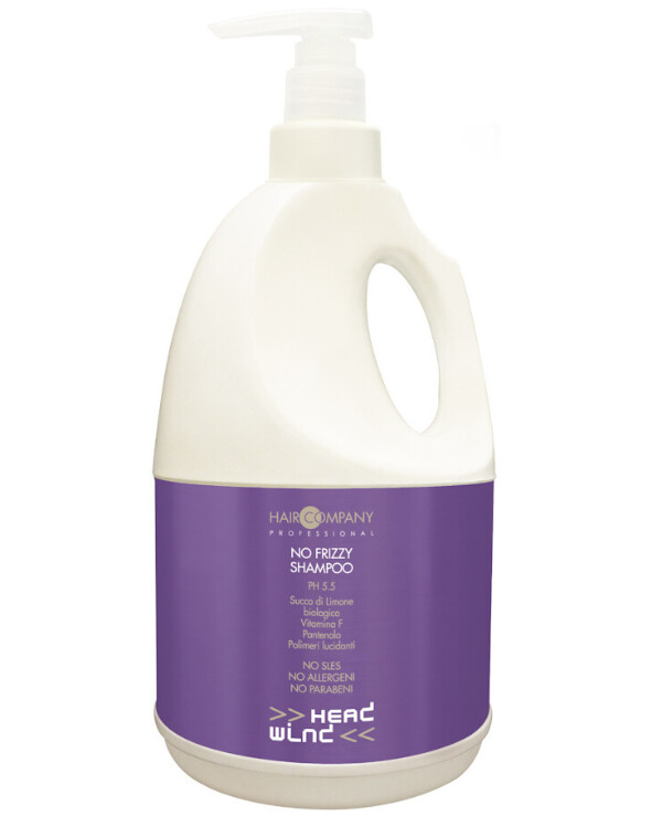 Hair Company professional - Smoothing shampoo Head Wind No Frizzy Shampoo 2000ml