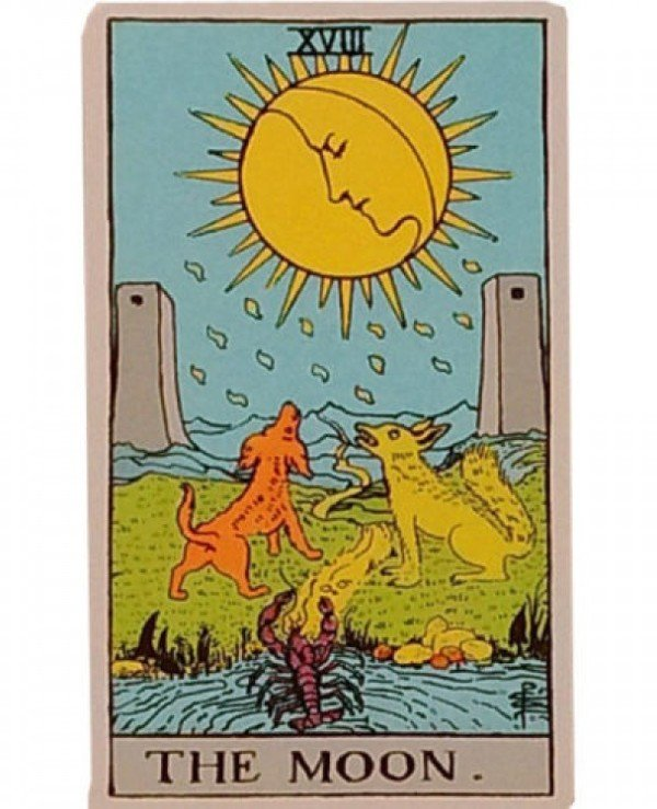 AGM-Urania Tarot - Tarot Waite Premium (larger version) Waite Tarot Premium  back
